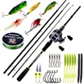 BURNING SHARK Fishing Rod Reel Combos,4 Piece Ultra Light Fishing Combos, Travel Fishing Poles Reel Combos Freshwater Fishing Packaging Box
