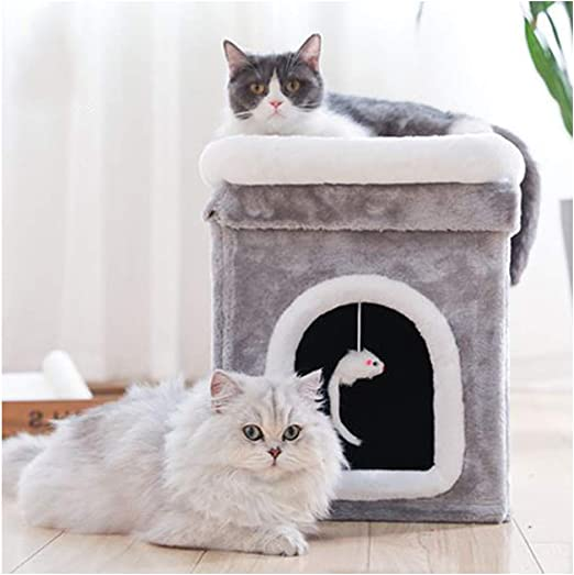 GDDYQ Marco de Escalada para Gatos, Plataforma de Salto para Gatos ...