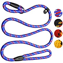 Coolrunner 5 FT Nylon Dog Leash Standard Training Adjustable Pet Slip Lead for Small and Medium Dogs(10-80 lb)