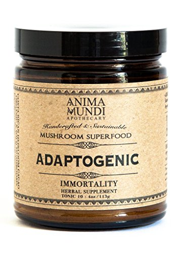 Anima Mundi Apothecary - Organic Adaptogenic Powder: 7 Mushrooms + Heirloom Cacao (4 oz)