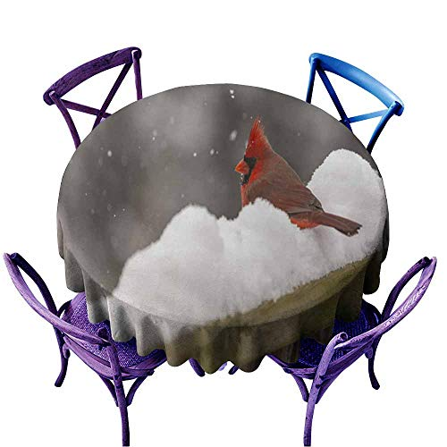 - AndyTours Waterproof Table Cover,Male Red Cardinal on Snow Covered Fence,Party Decorations Table Cover Cloth,63 INCH