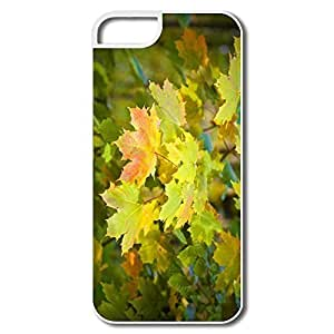 IPhone 5 5S Cases, Autumn Maple Tree White Cover For IPhone 5/5S
