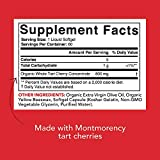 Tart Cherry Concentrate - Made from Montmorency