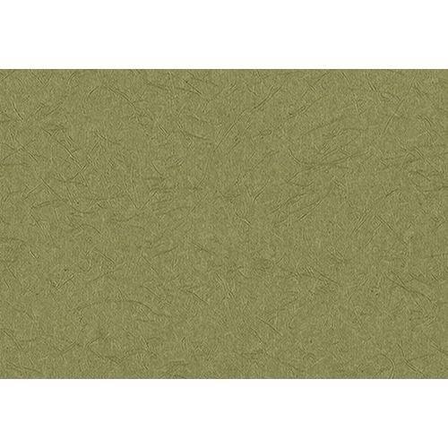 サンゲツ 壁紙46m 和 無地 グリーン 和 RE-2690 B06XKYWD3J 46m|グリーン2