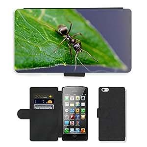 hello-mobile PU LEATHER case coque housse smartphone Flip bag Cover protection // M00135856 Hormiga Hoja Insecto Naturaleza Cerrar // Apple iPhone 5 5S 5G