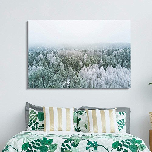White Pine Tree Forest Covered Snow Frost