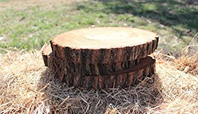 """4 Pack Natural Wood Slices, 8-11"""", Round Wood Slabs, Rustic Tree Bark Slice, Wedding Table Centerpiece, Wood Crafts, locally sourced in Oklahoma"""