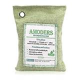 CTlite Natural Air Purifying Bag, Bamboo Charcoal Air Freshener Bag Odor Eliminator for Cars Closets Bathrooms Refrigerators (Green with Ring)