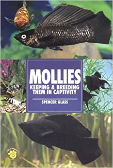 Mollies: Keeping and Breeding Them in Capitivity