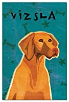 Tree-Free Greetings Eco-Notes Notecard Set, 4 x 6 Inches, 12-count Notecards with Envelopes, Vizsla (65024)