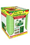 green container - Debbie Meyer Ultra Lite Green Boxes Set, 16-Piece