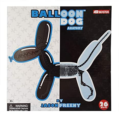 Amazon Balloon Dog Anatomy Toys Games