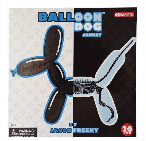 Balloon Dog Anatomy