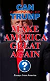 img - for Can Donald Trump Make America Great Again? book / textbook / text book
