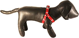 product image for NCAA Collegiate Dog Harness