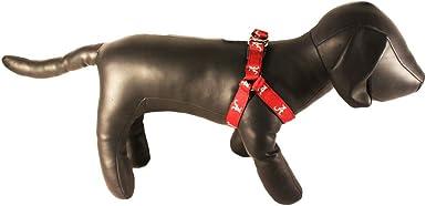 NCAA Collegiate Dog Harness