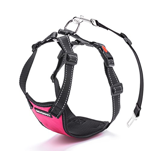 DogJog Dog Car Harness Plus Connector Strap Safety Vest Harness Adjustable Double Breathable Mesh Fabric Travel Regular Vest Harness with Car Seat Belt Lead Clip(Large,Pink)