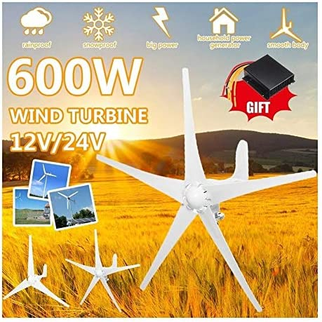 600W 12V/24V Wind-Turbinen-Generator 5 Blades Horizontal Windgenerator Mit Controller-Windmühle Energieanlagen Lade (Voltage : 24V)