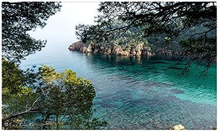 España mar Crag ramas Cove Costa Brava Girona naturaleza viaje sitios postal Post tarjeta: Amazon.es: Oficina y papelería