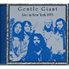 Live in New York 1975