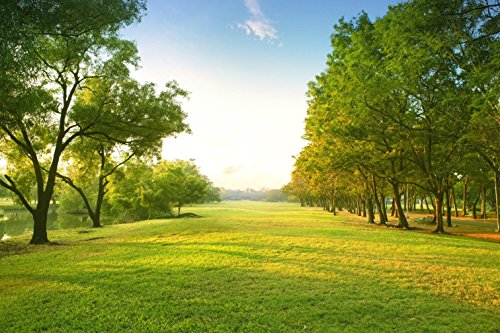 Park Scene Background for Photo Studio Green Grass Field Trees Nature Scenic Backdrop Photography 10x6.5 ft - Park Scene