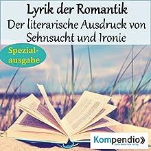 Lyrik der Romantik: Der literarische Ausdruck von Sehnsucht und Ironie (Spezialausgabe) Hörbuch von Alessandro Dallmann Gesprochen von: Michael Freio Haas