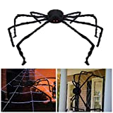 Giant Halloween Spider 4.9ft/150cm With LED Eyes