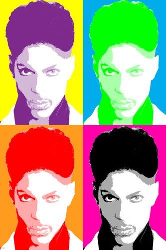 celebrity singer Prince Multiple Image Pop Art Poster sexy new