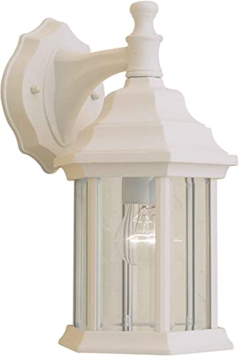 Forte Lighting 1715-01-13 Exterior Wall Light with Clear Beveled Glass Shades, Matte White