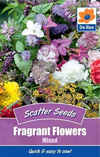 2 Packs of Fragrant Flowers Mixed Garden Scatter Seeds
