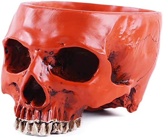 Moligh Doll 1pc Hand Carved Skull Flower Pot Human Skull Bone Bowl Home Garden Decor Halloween Decoration Flower Pots Decorative Amazon Co Uk Kitchen Home