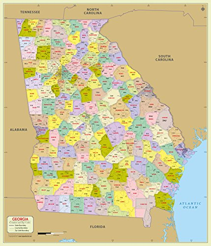 Georgia County with Zip Code Map (36