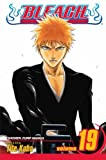 Bleach, Vol. 19: The Black Moon Rising
