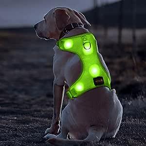 Bseen - Arnés LED para Perro con USB Recargable de Malla Suave con ...
