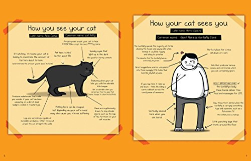How To Tell If Your Cat Is Plotting To Kill You The Oatmeal
