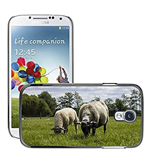 Hot Style Cell Phone PC Hard Case Cover // M00112094 Sheep Landscape Netherlands Nature // Samsung Galaxy S4 S IV SIV i9500