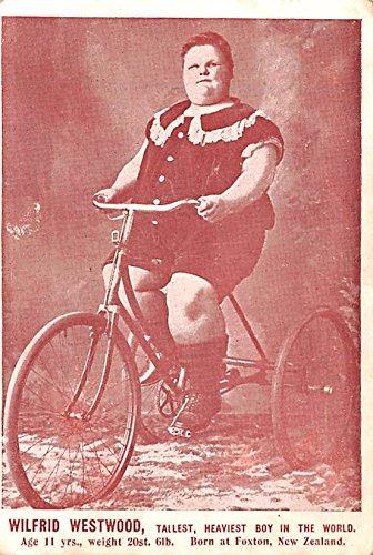 Wilfrid Westwood Tallest, Heaviest Boy in the World Heaviest Person Postcard