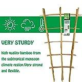 Mininfa Natural Bamboo Trellis 24 Inches