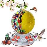Grateful Gnome - Hummingbird Feeder - Hand Blown Glass - Half Yellow Flowers and Half Wild Flowers Globe - 24 Fluid Ounces