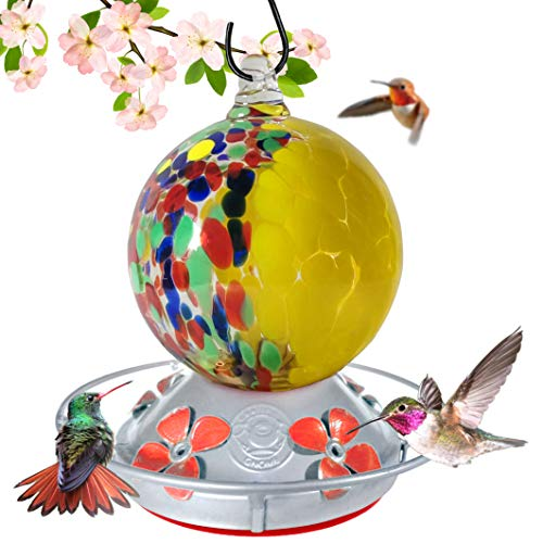 (Grateful Gnome - Hummingbird Feeder - Hand Blown Glass - Half Yellow Flowers and Half Wild Flowers Globe - 24 Fluid Ounces)