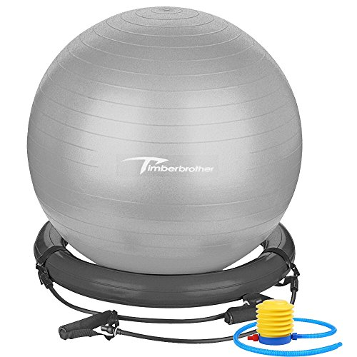 Timberbrother Anti-Burst Exercise Ball/Stability Ball/Ball Chair 65cm/75cm Diameter with Resistance Bands & Pump for Yoga, Pilates, Gym, Office and Home Exercise