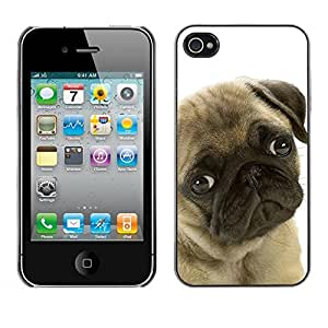 Be Good Phone Accessory // Dura Cáscara cubierta Protectora Caso Carcasa Funda de Protección para Apple Iphone 4 / 4S // Pug Sad Dog Eyes Cute Pet Canine