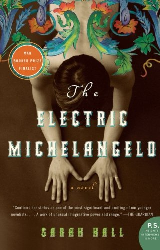 Image of The Electric Michelangelo