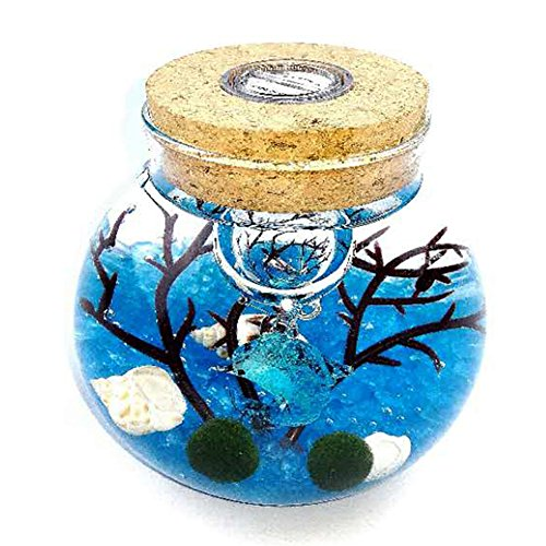 Omem Aquarium Kits Living Moss Ball Valentine Gift Sea Fan  Gravel  Cone Seashell  Work Desk Decoration  Blue