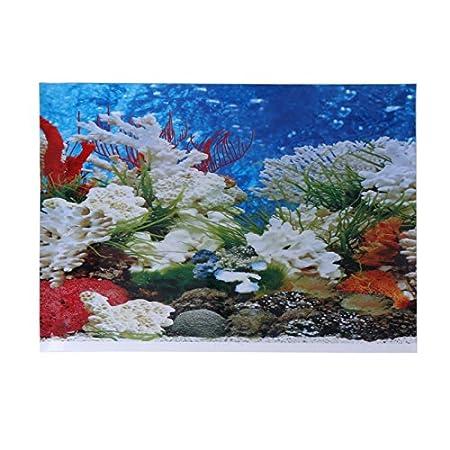 Aquarium Poster Double Sided PVC Background Shoresu Fish Tank Decoration Landscape 42*30