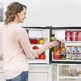 TACKLIFE Compact Refrigerator 1.6 Cu.Ft, Mini