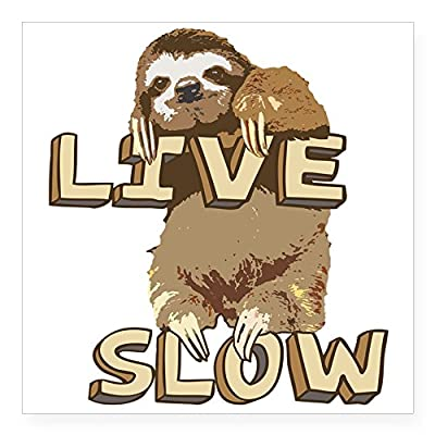 Cafepress Funny Sloth Live Slow Sticker Square Bumper Sticker Car Decal, 3&Quot;X3&Quot; (Small) Or 5&Quot;X5&Quot; (Large) - Sloth Art