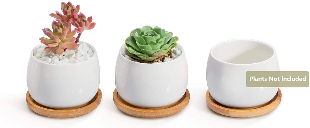 Opps White Ceramic Cute Succulent Cactus Plant Pot with Bamboo Tray Pack of 3