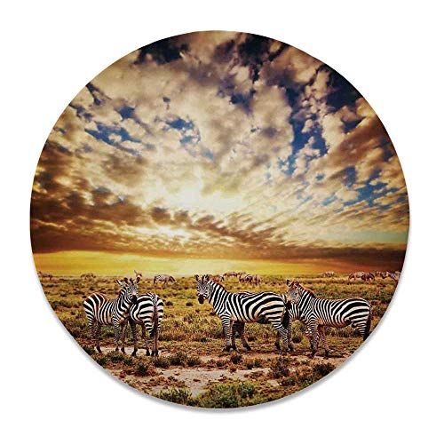 YOLIYANA Safari Round Ceramic Decorative Plate,Dreamy Photo of Savannahs at Sunset with Zebras on The Grassland Dramatic Sky Wild for Table Or Wall,7 inch