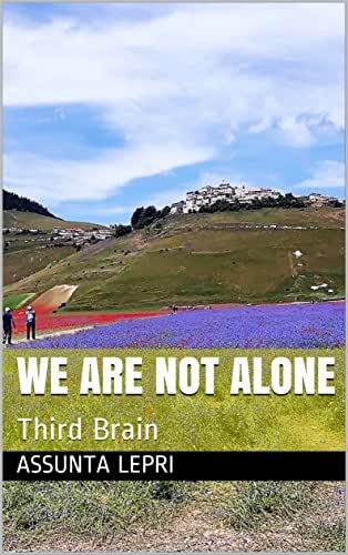 we are not alone : Third Brain